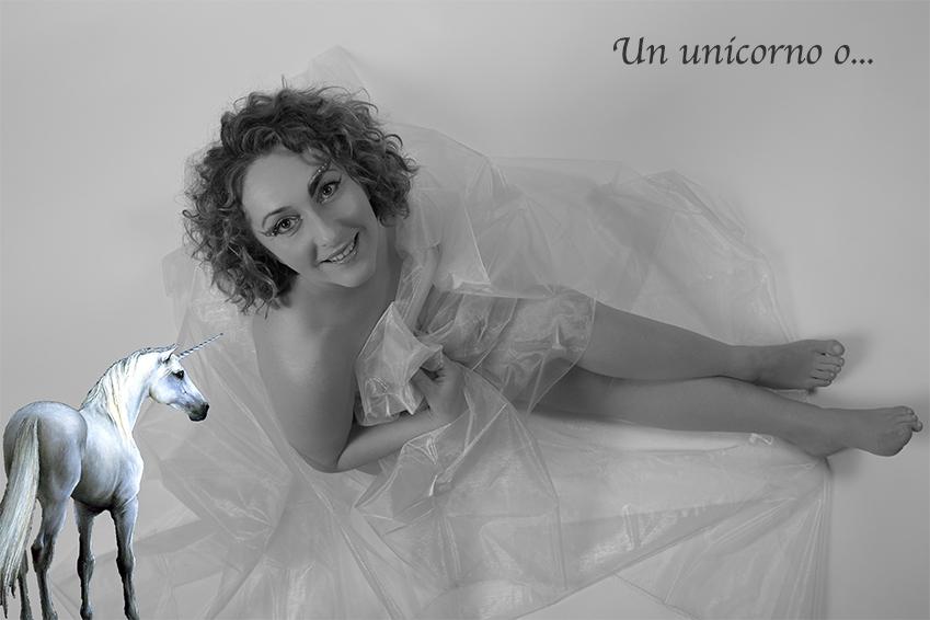 book fotografico unicorno